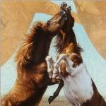 Wild Horses by Andrew Denman