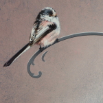 Long-Tailed Tit by Andrew Denman