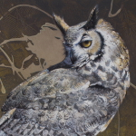Great Horned Owl by Andrew Denman