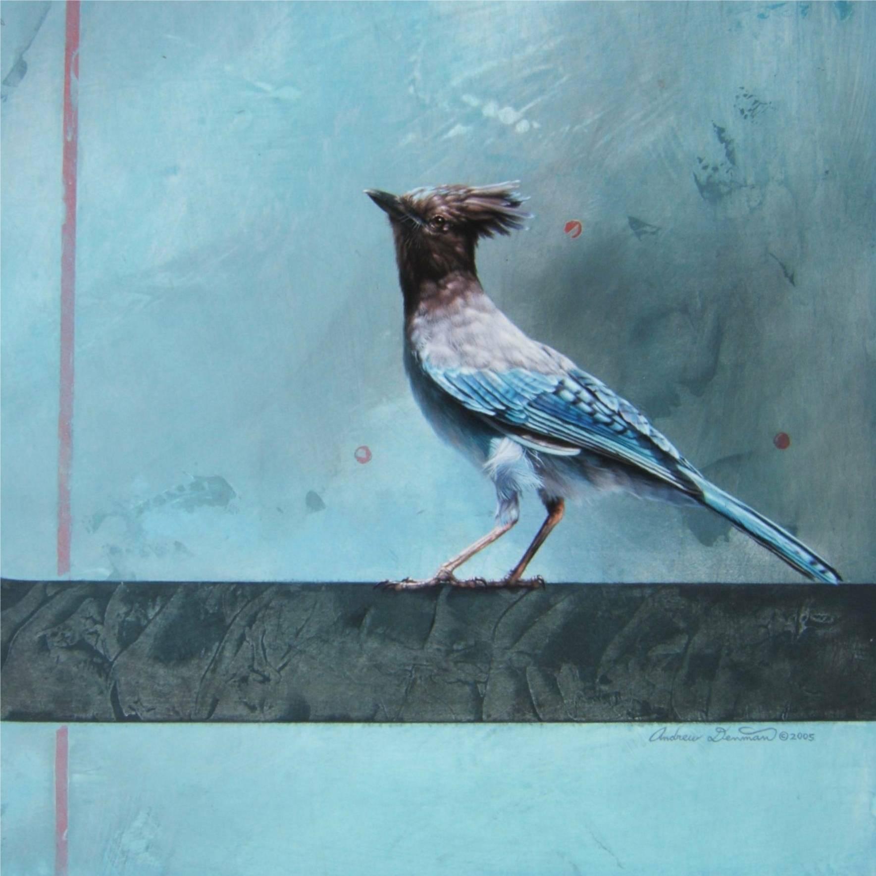 Steller's Jays by Andrew Denman