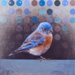 Bluebird by Andrew Denman