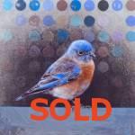Bluebird by Andrew Denman
