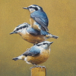 Nuthatch Totem by Andrew Denman