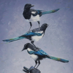 Magpie Totem by Andrew Denman