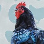Chicken & Egg by Andrew Denman