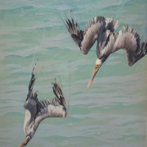 Diving Pelican Diptych Vera by Andrew Denman