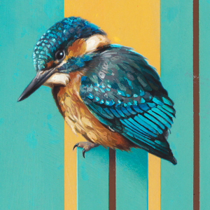 Kingfisher by Andrew Denman
