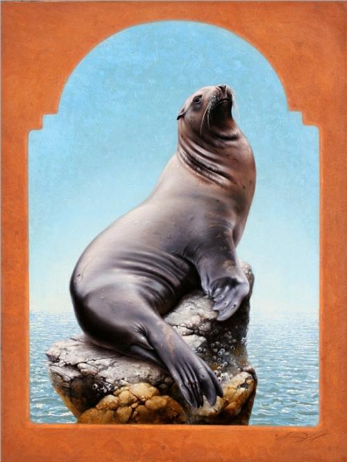 California Sea Lion by Andrew Denman