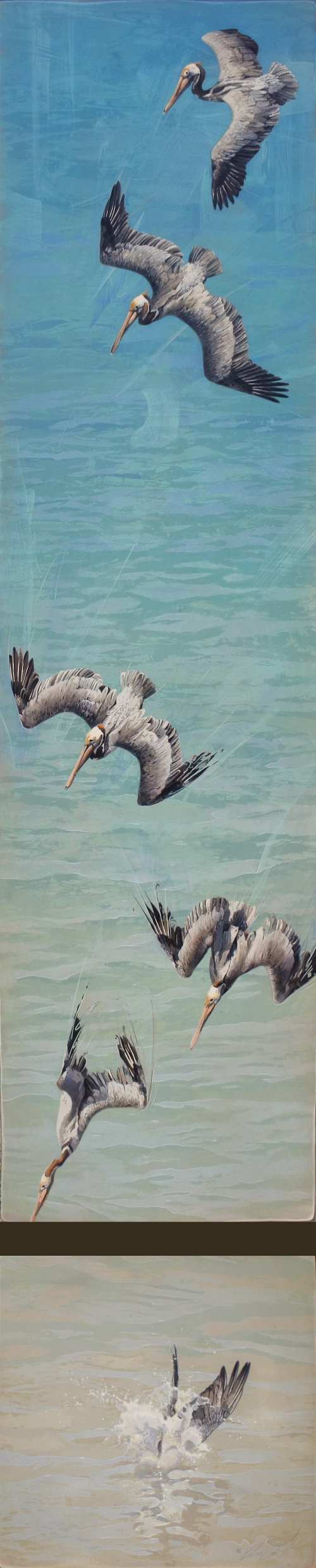 Brown Pelicans by Andrew Denman
