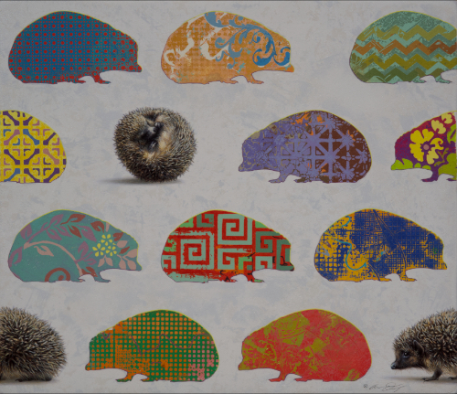 Hedgehogs by Andrew Denman
