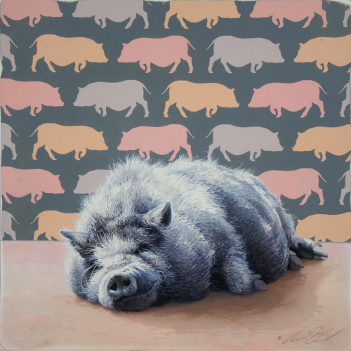 Pot-Bellied Pig by Andrew Denman