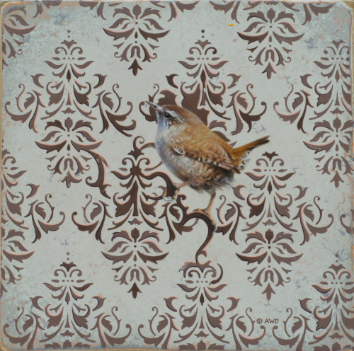 Wren by Andrew Denman