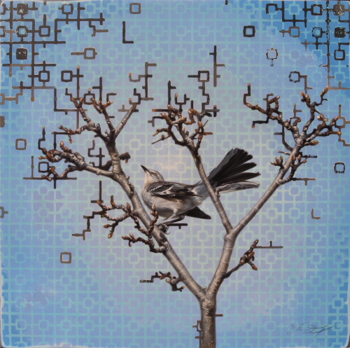 Mockingbird by Andrew Denman