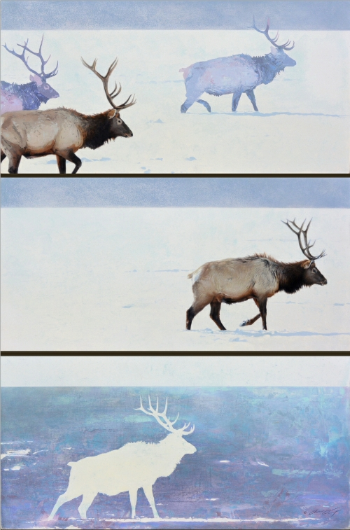 Winter Elk by Andrew Denman