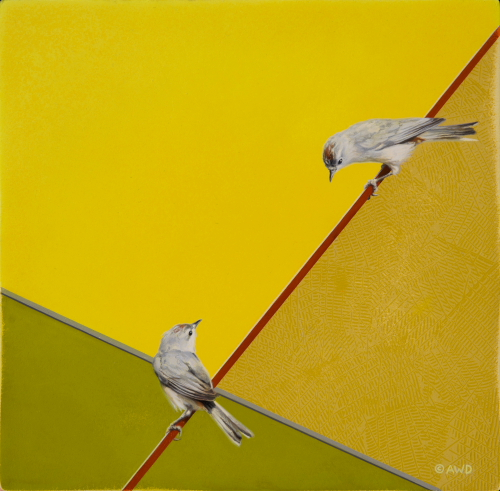 Lucy's Warblers by Andrew Denman
