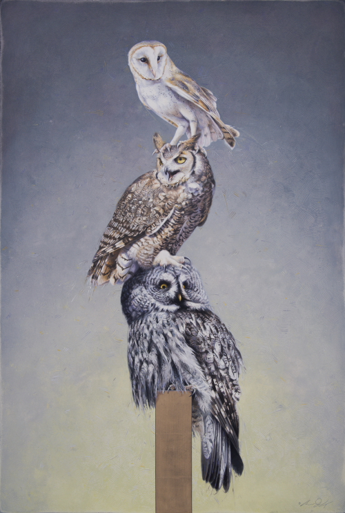 Totem of Owls by Andrew Denman