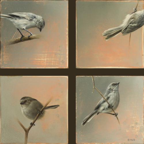 Bushtits by Andrew Denman